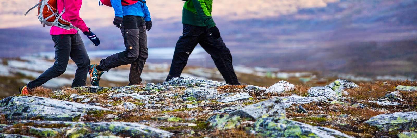 Vandrare går till STF Blåhammaren - Storerikvollen