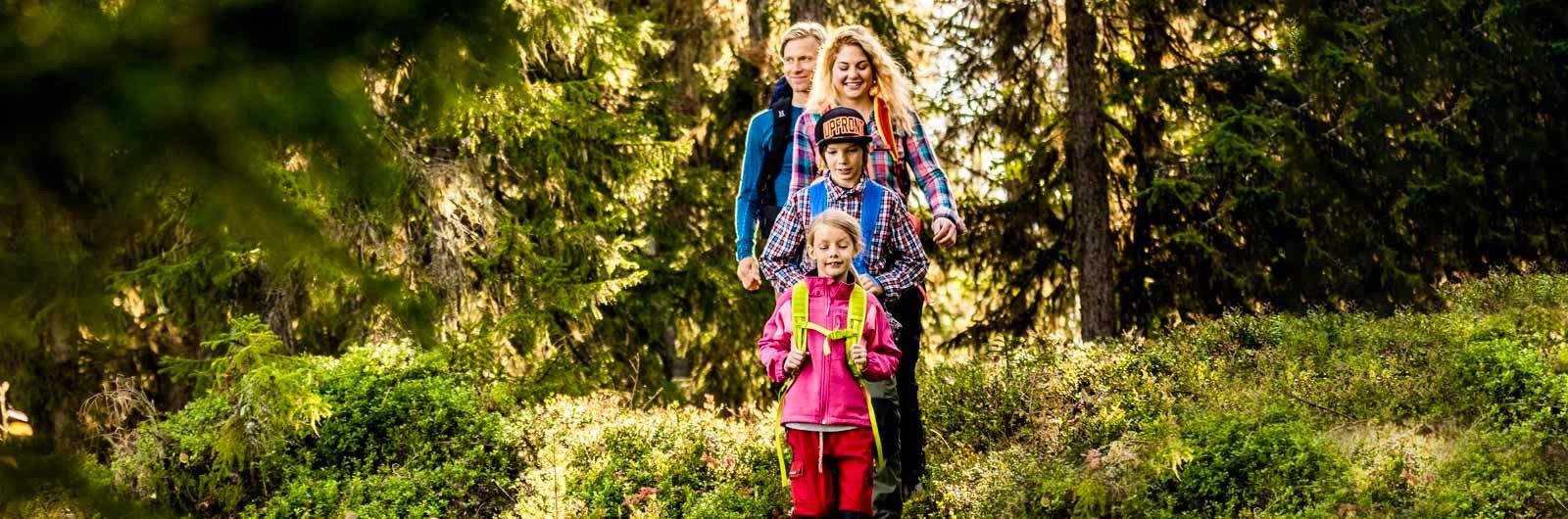 Familj går på led i skogen