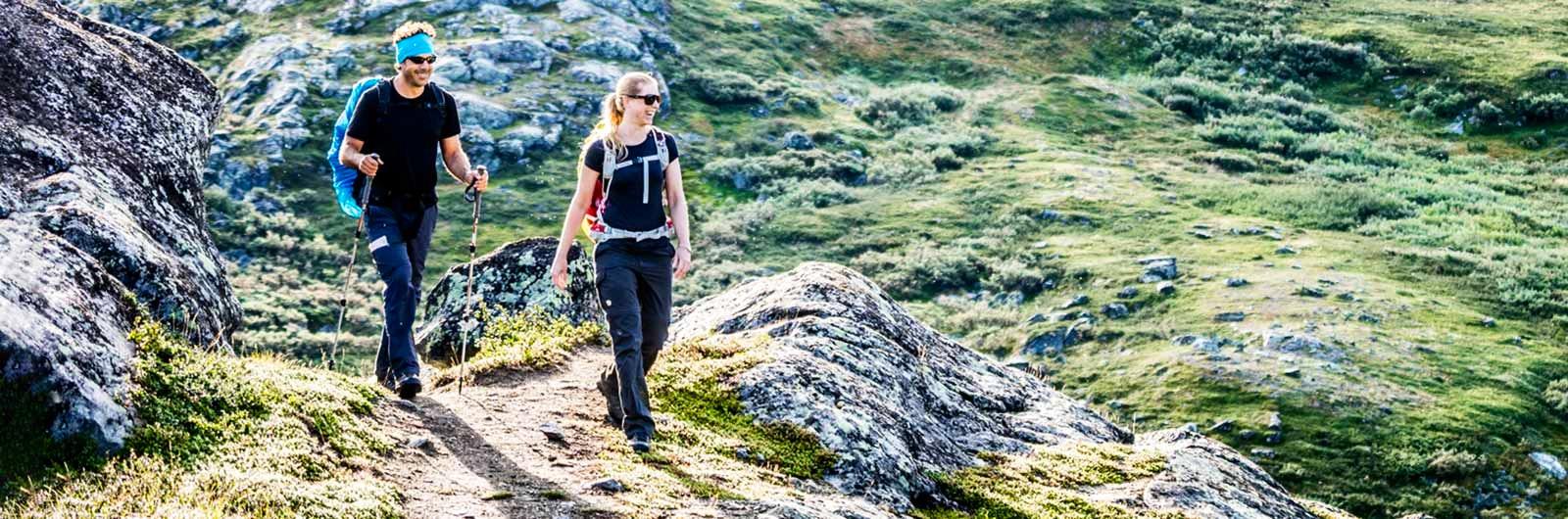 Glada vandrare i kargt landskap