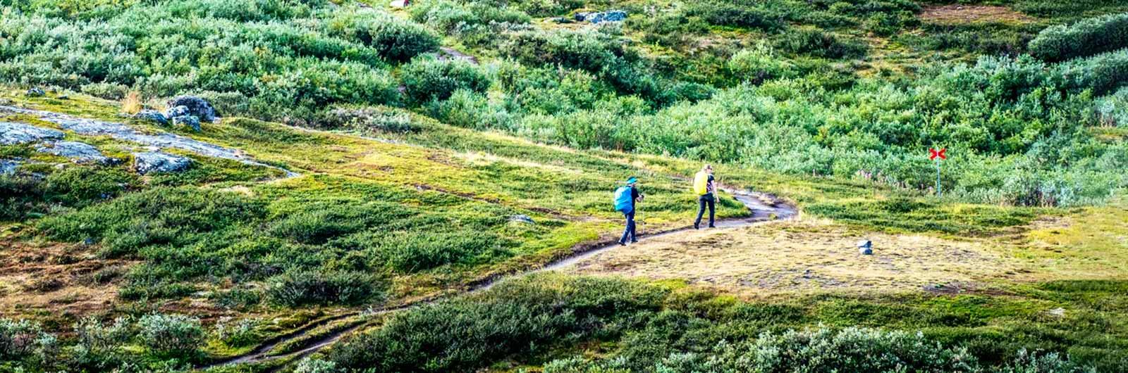 Par på fjällvandring i Lappland