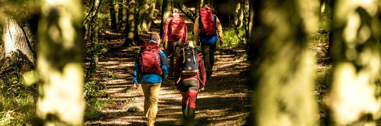 Färgglada vandrare på stig i skogen