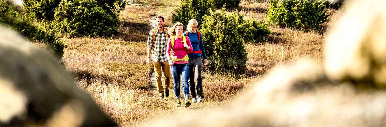Grupp som vandrar i lågland