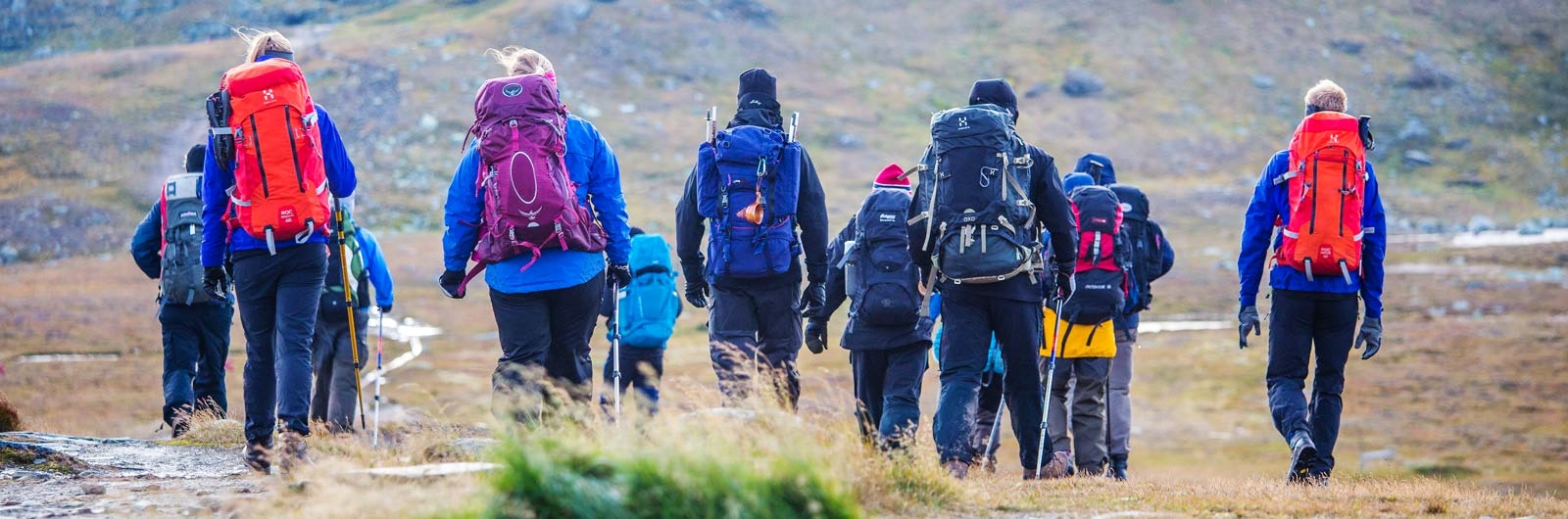 Stor grupp med vandrare mellan Vålåvalen och Helags