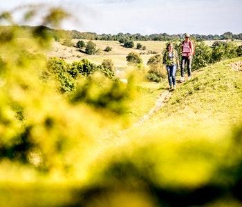 Två vandrare på Österlen