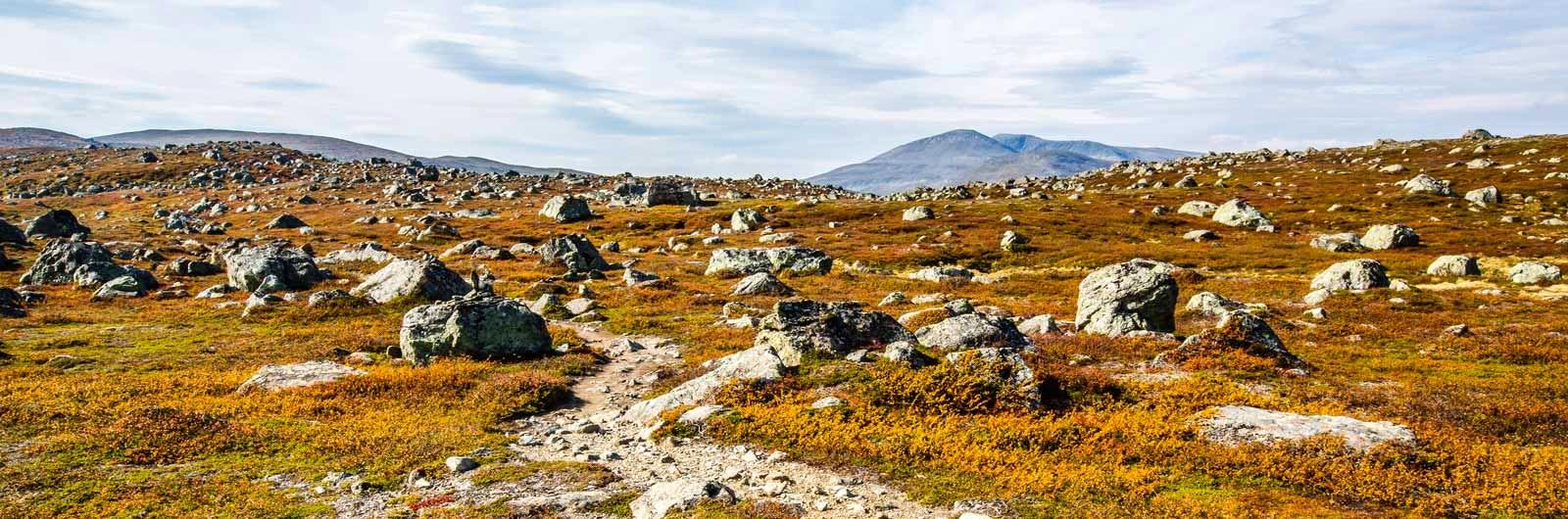 Led med stenblock i kargt landskap
