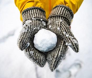 snöboll-snoupplevelser
