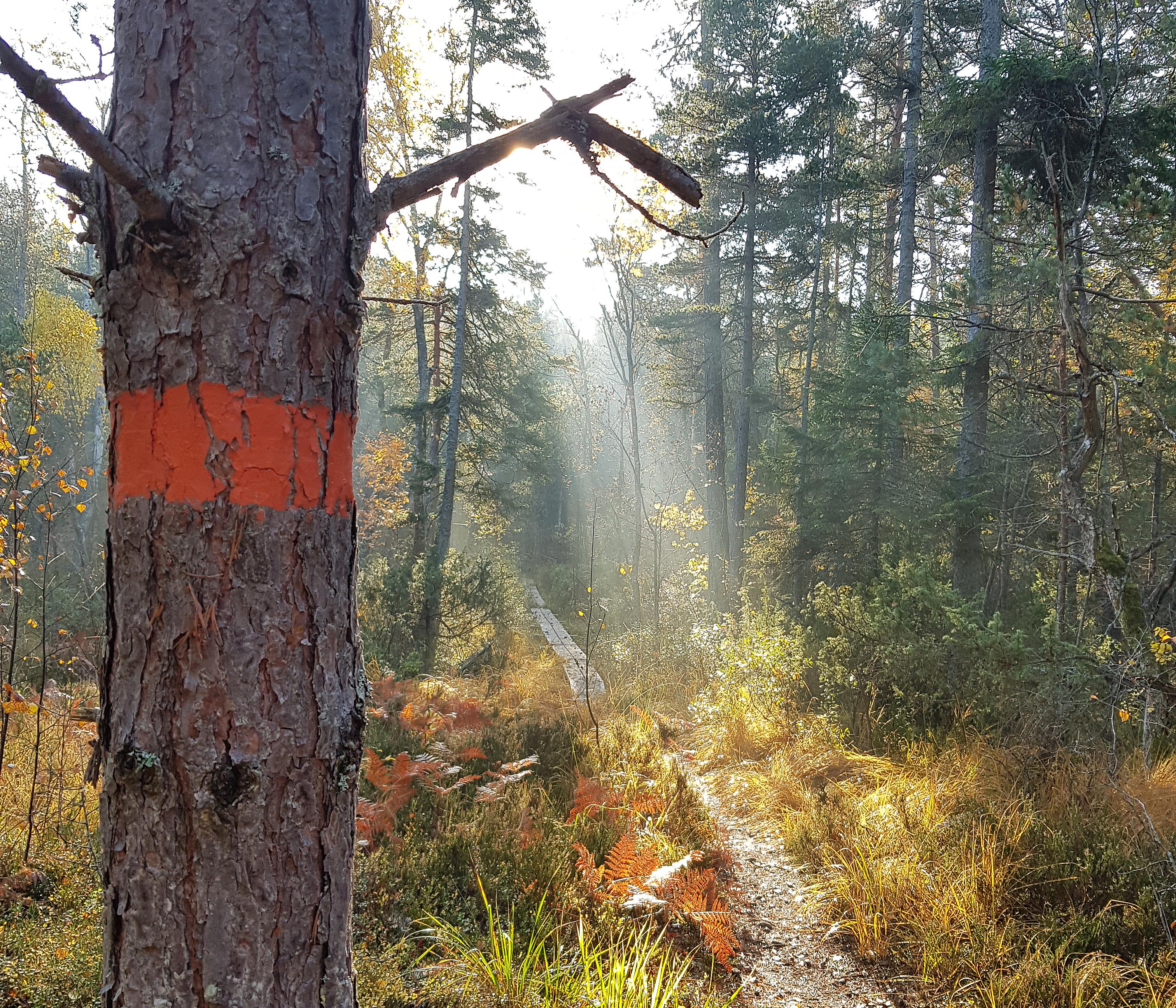 Sörmlandsleden Svenska Turistföreningen
