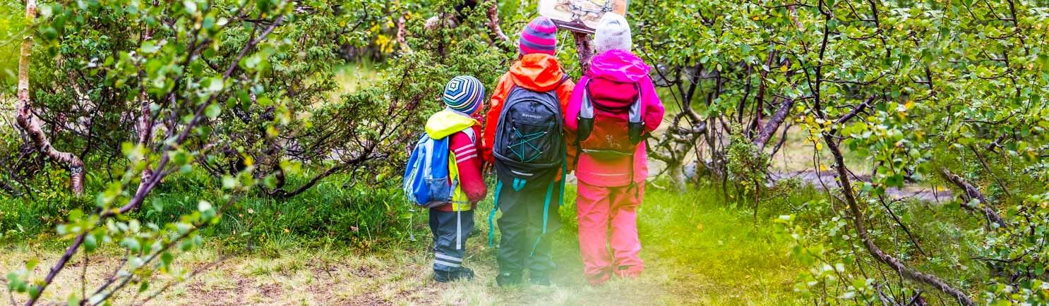 Tre höstklädda barn i skogen