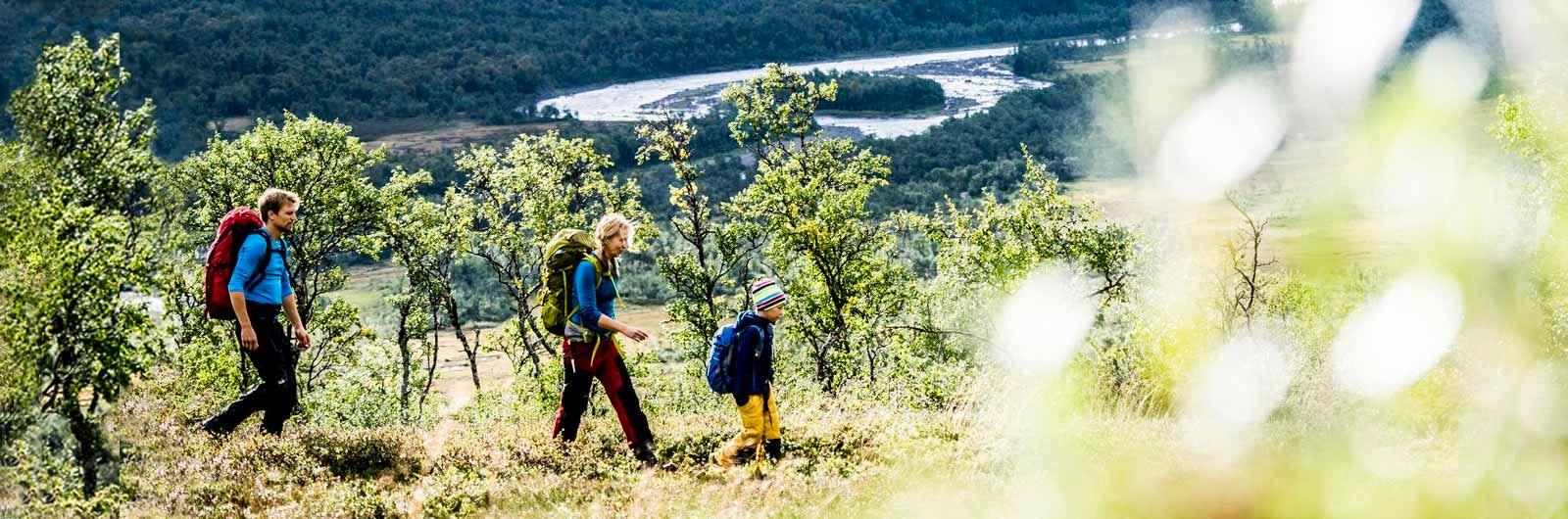 Vandring med barn grönskande landskap