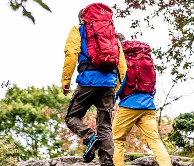 Grupp vandrare med ryggsäckar