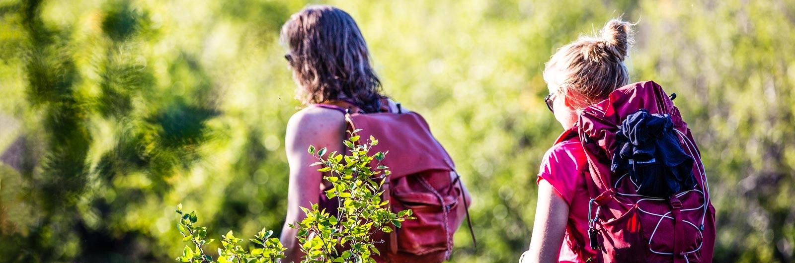 Par vandrar på sommaren längs Kungsleden