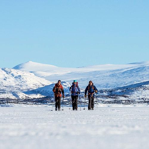 tre skidåkare i fjällen