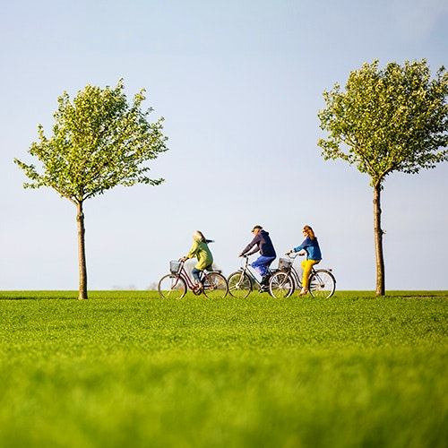 cykla längs österlen