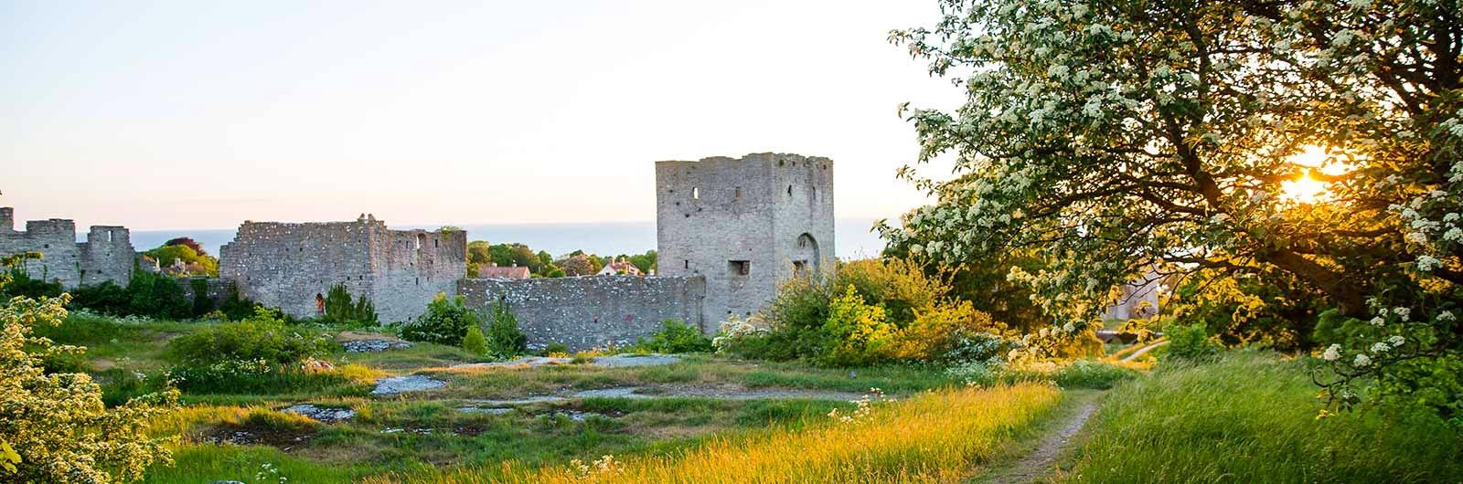 Vacker ruin på Gotland