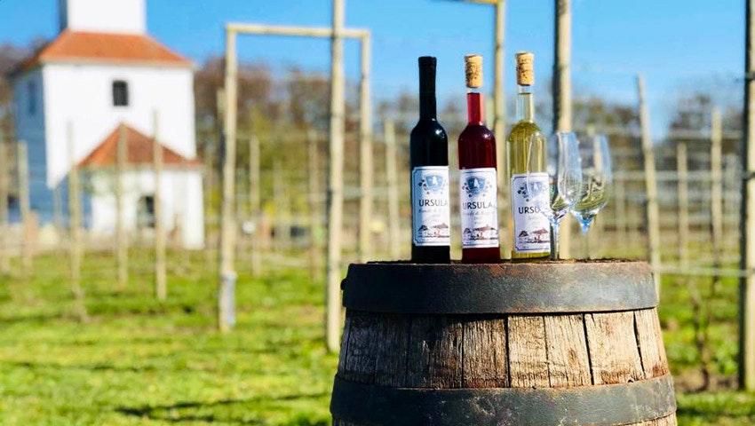 vinflaskor från ivögårdens vingård