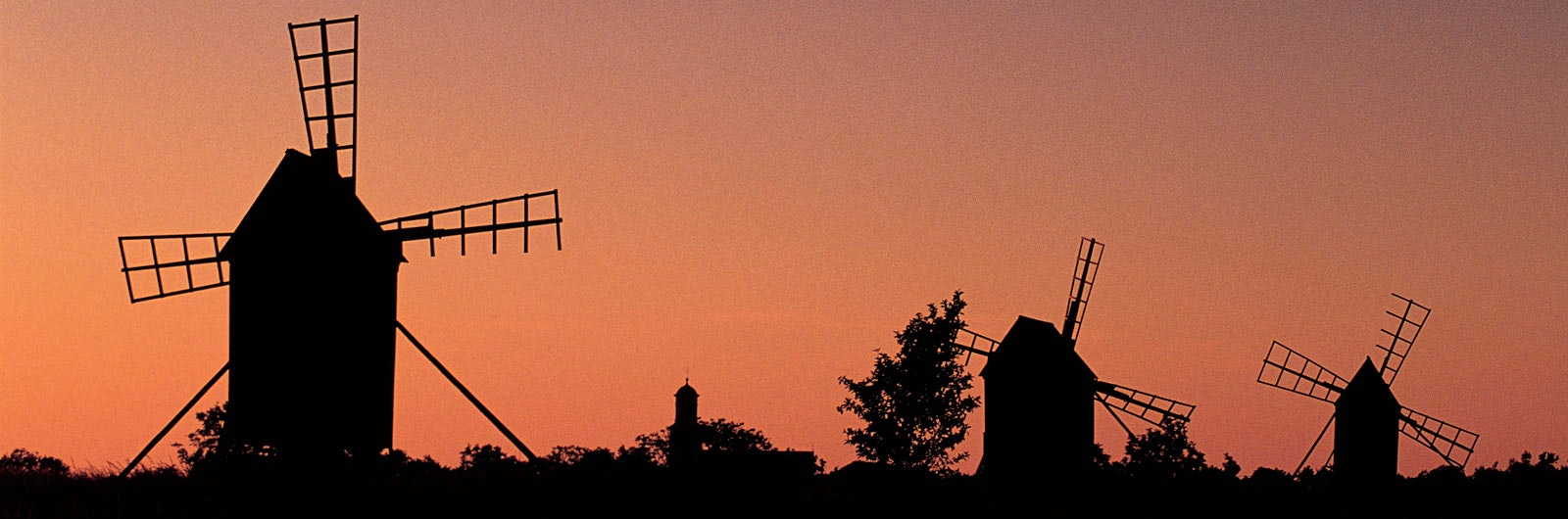 Tre väderkvarnar i solnedgång på Öland