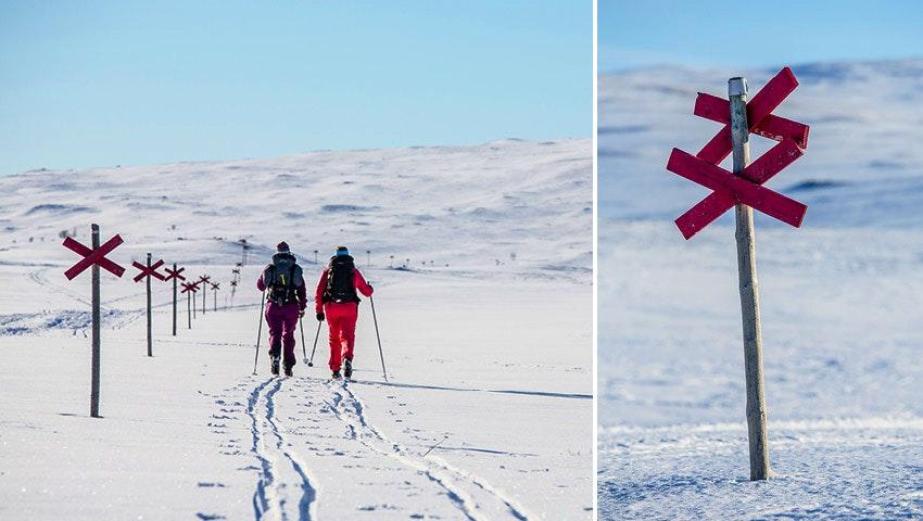 turskidakare-längs-vinterled