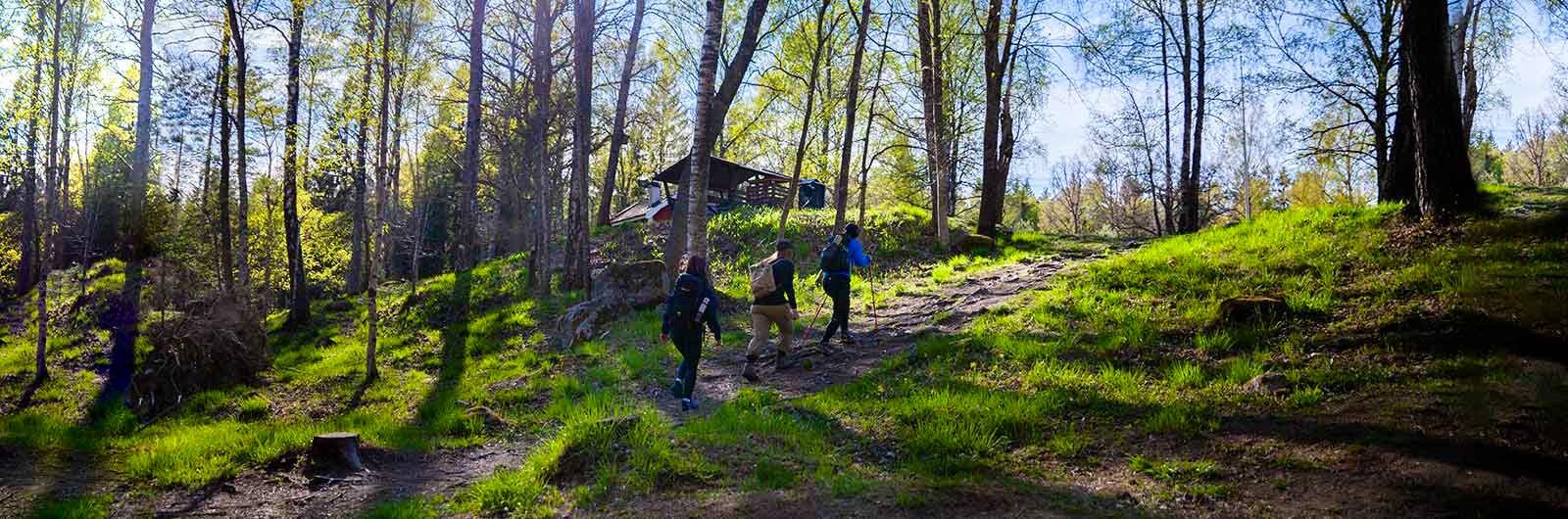 tre vandrare längs en etapp på sörmlandsleden
