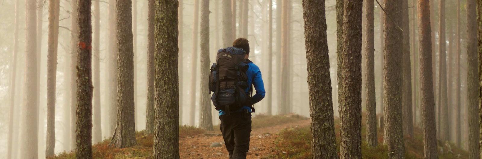 vandrare i dimma längs isälvsleden