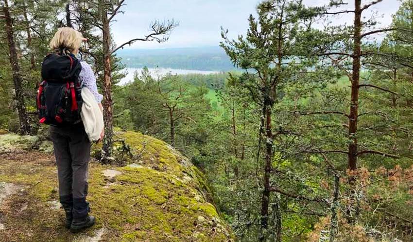 Vandrare ser på vacker utsikt över skog