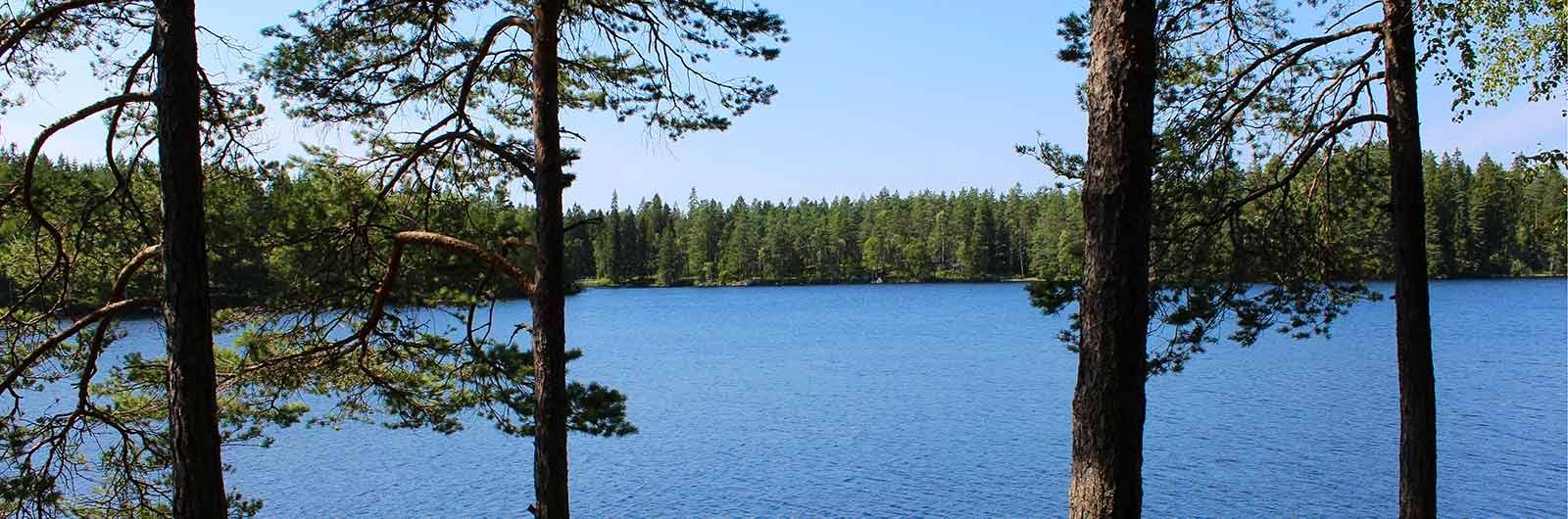 Töllstorpasjön längs smålandslederna