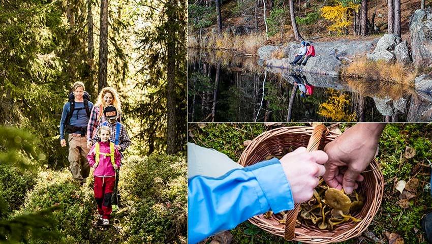 Tre bilder på vandrare längs Sörmlandsleden