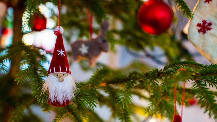 julgran i vålådalen