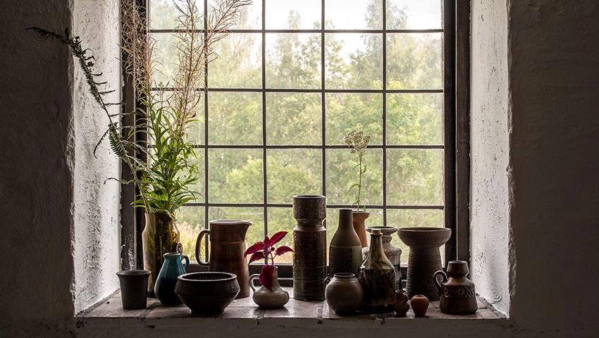 Fönster i borkhult