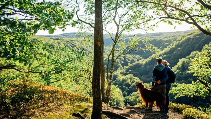 par med hund i söderåsens nationalpark